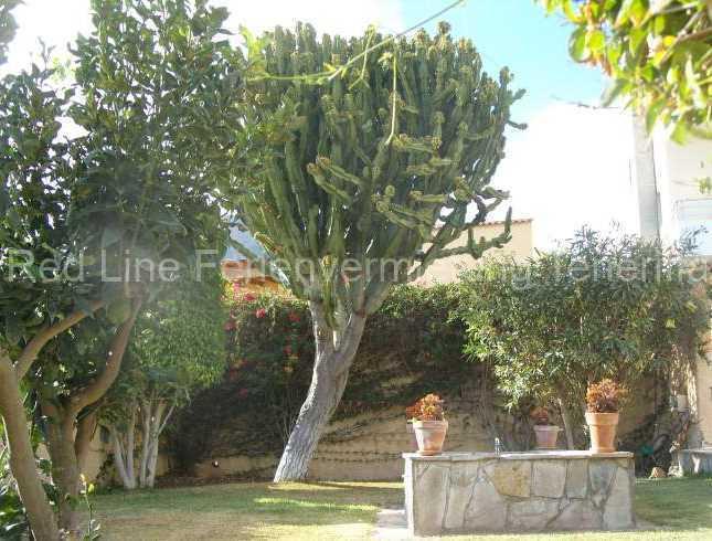 Ferienhaus auf Gartengrundstück mit Pool 021