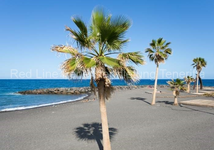 Moderne Ferienwohnung mit Pool direkt am Strand in Candelaria - 034
