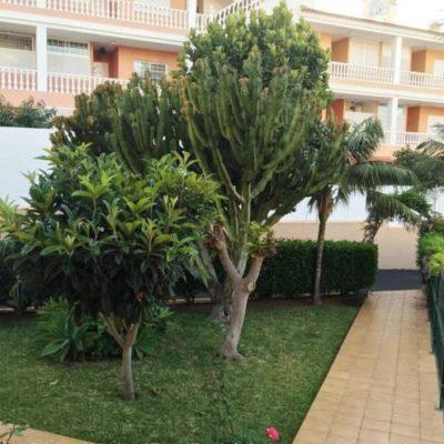 Teneriffa - Große Ferienwohnung mit drei Terrassen in Puerto de la Cruz für 6 Personen.