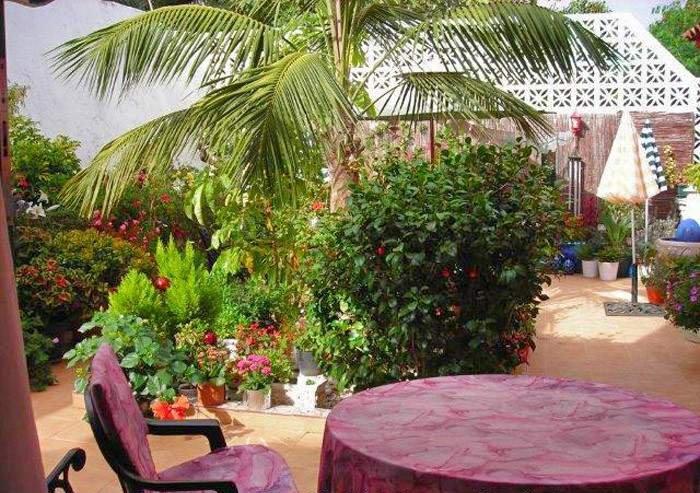 Teneriffa Apartment in La Orotava mit Meerblick, Dachterrasse und Garten